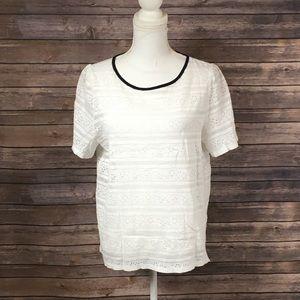 LOFT White Lace Black Trim Top